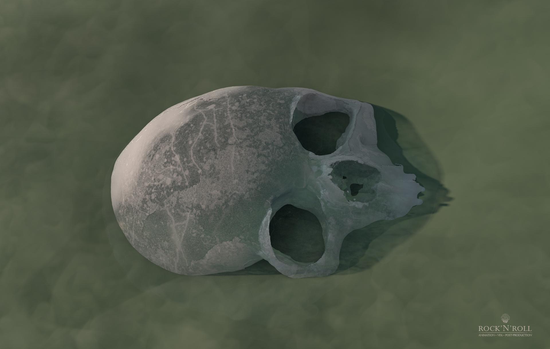 Ice Skull & Water